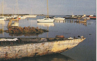 Harbor at Île de Noirmoutier
